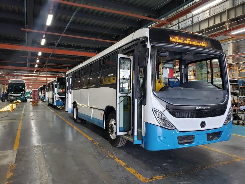Torino MD renueva la flota del Optibus en León